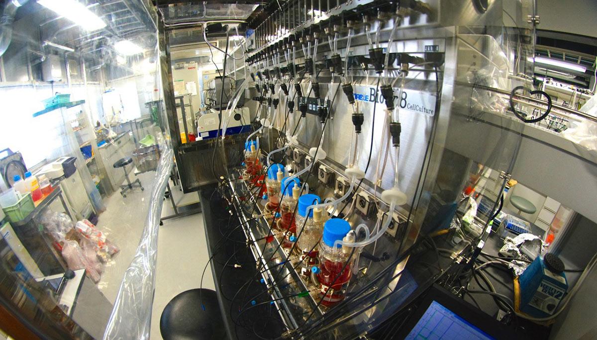 biotech_lab